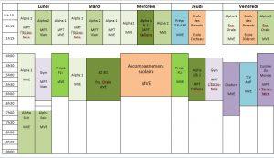 Planning des activités de Jasmin d'Orient pour l'année 2015-2016